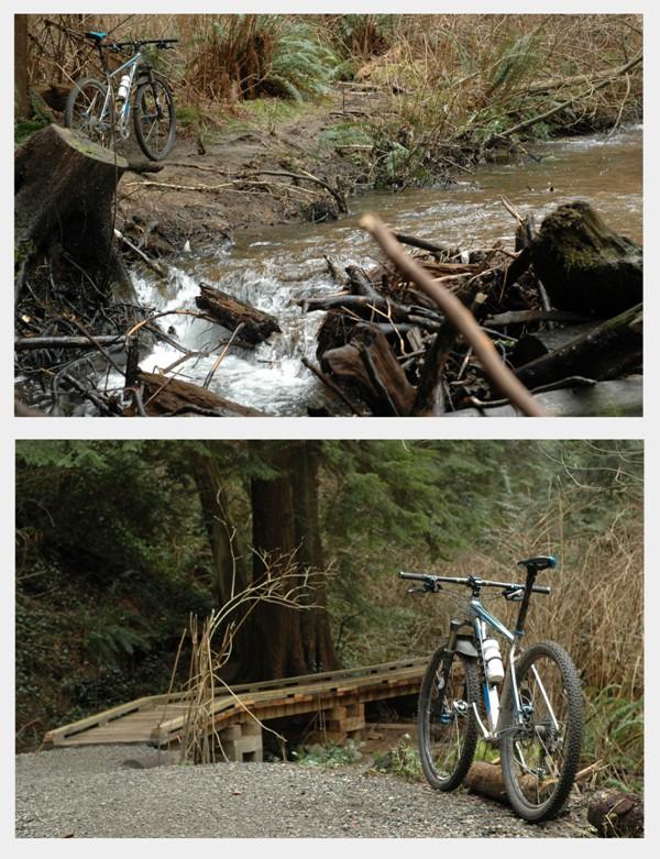 OSS Blog Post #1 - bike collage_1